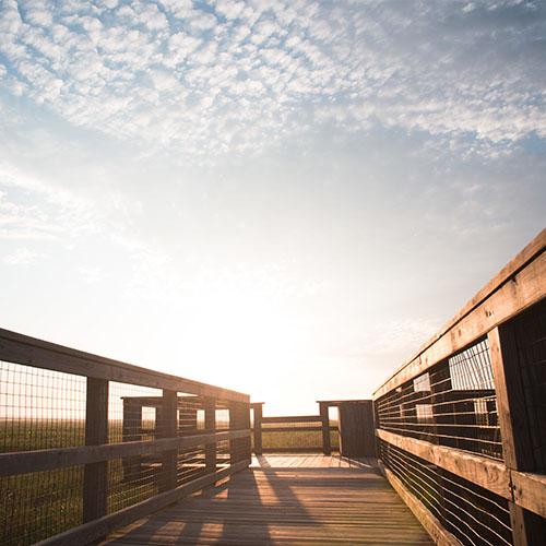 serene photo of sky and boardwalk at payne's prairie