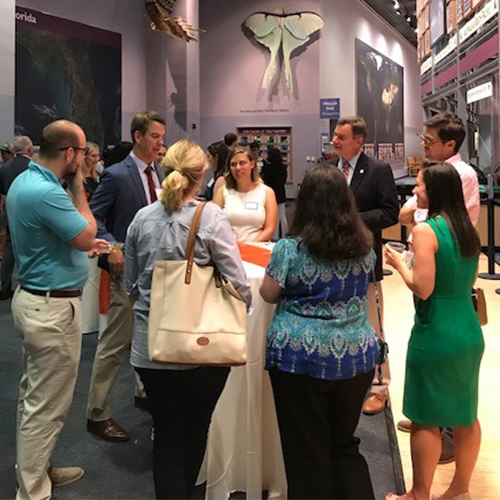 new uf faculty and professional staff gather around table at florida museum to network