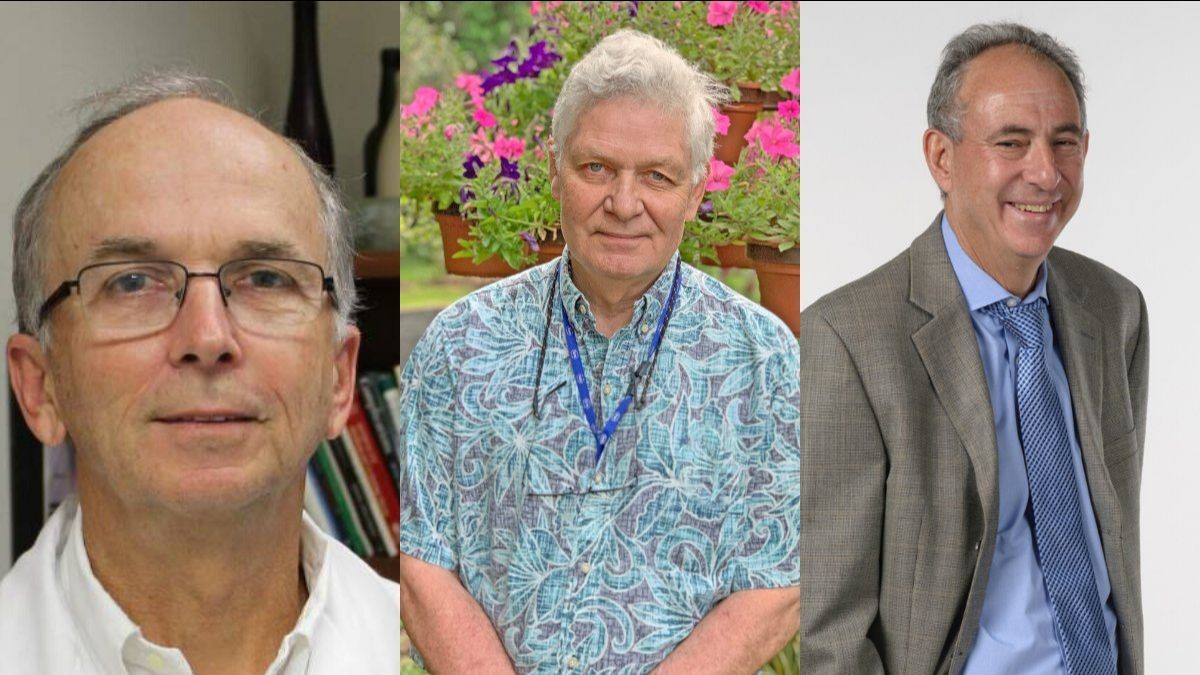 Three UF College of Medicine faculty in the departments of Anesthesiology, Pediatrics and Radiation Oncology were recently honored with the Lifetime Achievement Award.