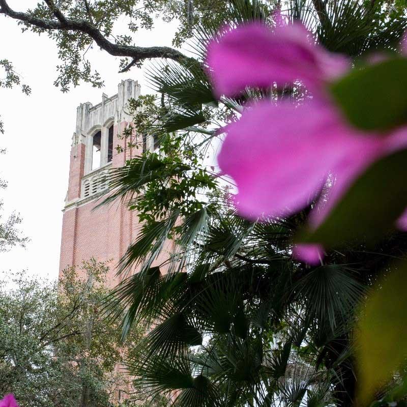 Century Tower behind flowers